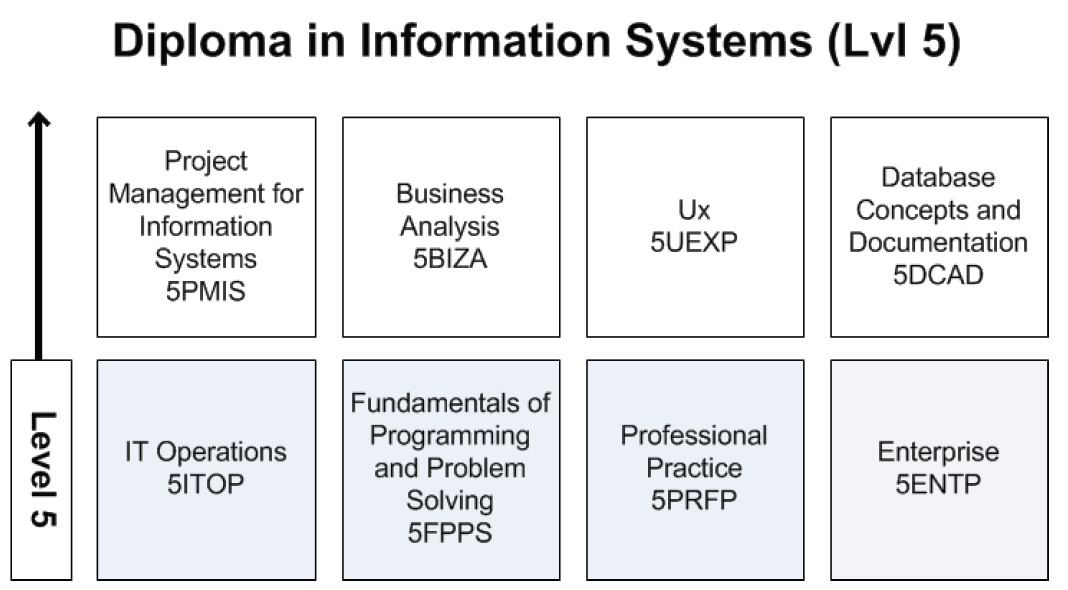 Diploma in Information Systems Level 5